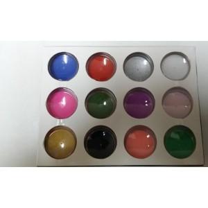 Kit 12 Colores Polvo Acrilico